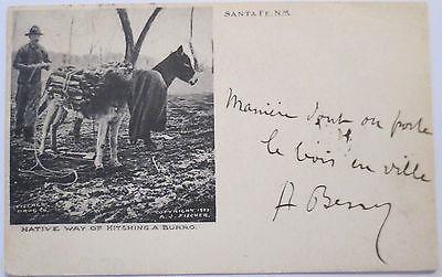 USA, Mann mit Esel in Santa Fe, New Mexico, 1908 (23707)