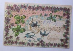 Geburtstag, Kleeblatt, Schwalben, Veilchen,      1903, Prägekarte  ♥ (58944)