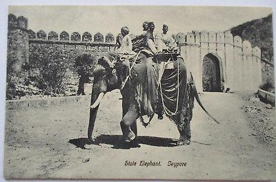 Elefant Indien, State Elephant Jeypore, ca. 1900 (46041)