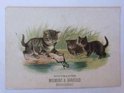 Kaufmannsbilder, Maumont & Barjeaud, Katze, Frosch, See, ca. 1900  ♥ (54685)