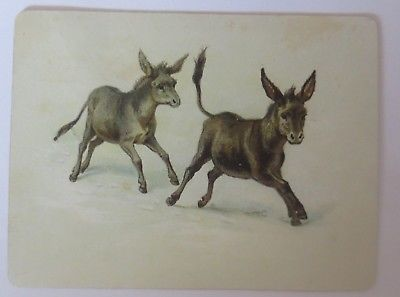 Kaufmannsbilder oder Sammelkarte Esel aus dem  Jahr 1892  ♥ (64593)