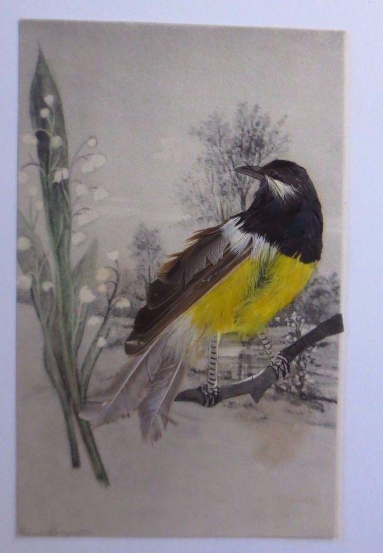 Vogel, Meise, Echte Federn, 1900 ♥ (17073)
