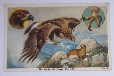 Kaufmannsbilder, Riquet, Der Adler  Nr.6 ♥ (26136)