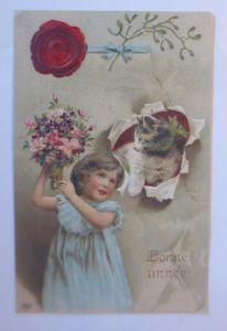 Neujahr, Kinder, Mode, Katzen, Leinwand, Blumen,   1911, Prägekarte  ♥ (65231)