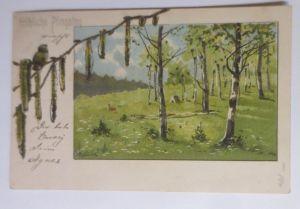 Pfingsten, Landschaft, Bäume, Mailick     1901, Glitzerkarte  ♥ (66585)