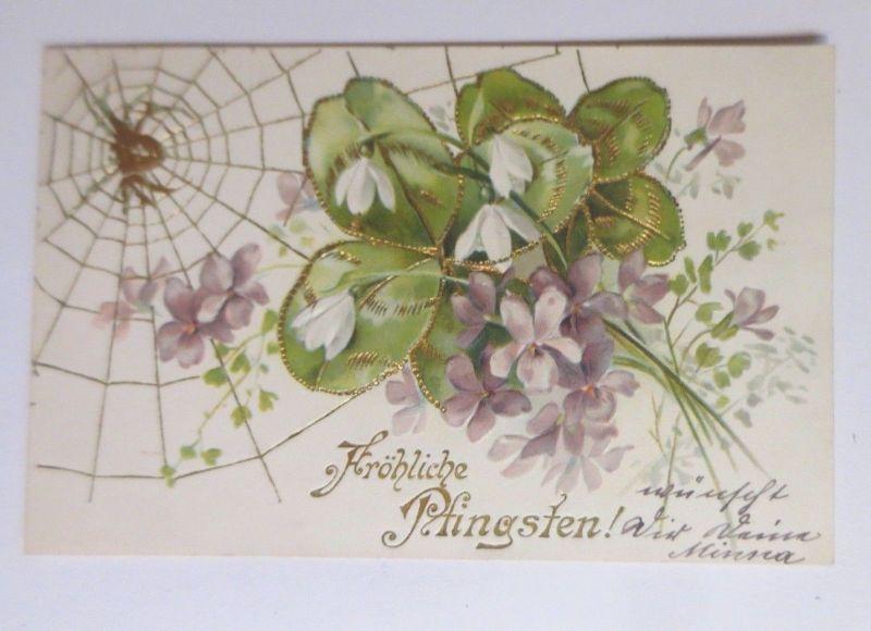 Pfingsten, Spinne, Spinnennetz, Kleeblatt, Blume,     1901, Prägekarte ♥ (66582)