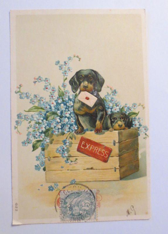Geburtstag Dackel Hund Kiste Express 1908 Pragekarte 31208