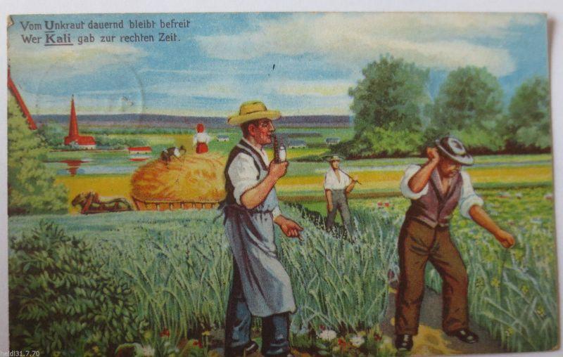Reklame, Werbung, Landwirtschaft, Kali gegen Unkraut, 1916 (32242)