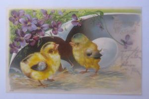 Ostern, Küken, Blumen, Eierschale,   1904, Prägekarte  ♥   (62698)