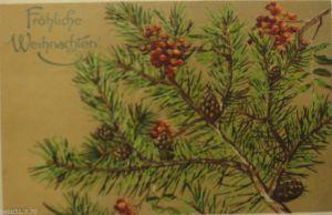 Weihnachten Tannenzweig Tannenzapfen 1907 Prägekarte Mailick ♥ (10389)