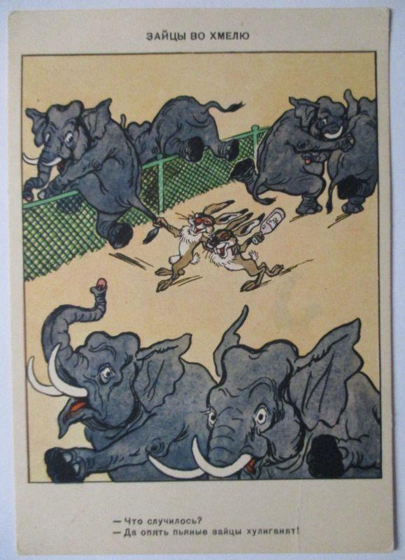 Zoo, betrunkene Hasen und Elefanten (48180)