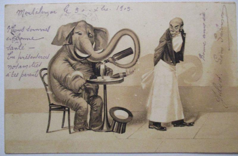 Tiere, Elefant mit Flasche Wein, Kellner, Frankreich 1903 (48178)