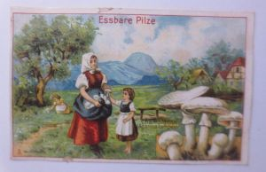 Kaufmannsbilder, Dr. Thompson Seifenpulver, Essbare Pilze ♥ (64124)