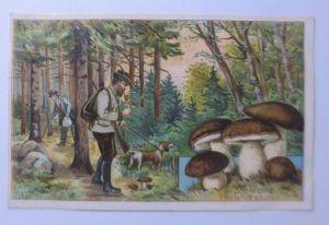 Kaufmannsbilder, Dr. Thompson Seifenpulver, Essbare Pilze ♥ (64121)