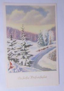 Weihnachten,  Winterlandschaft, Zwerg   1950 ♥  (62413)