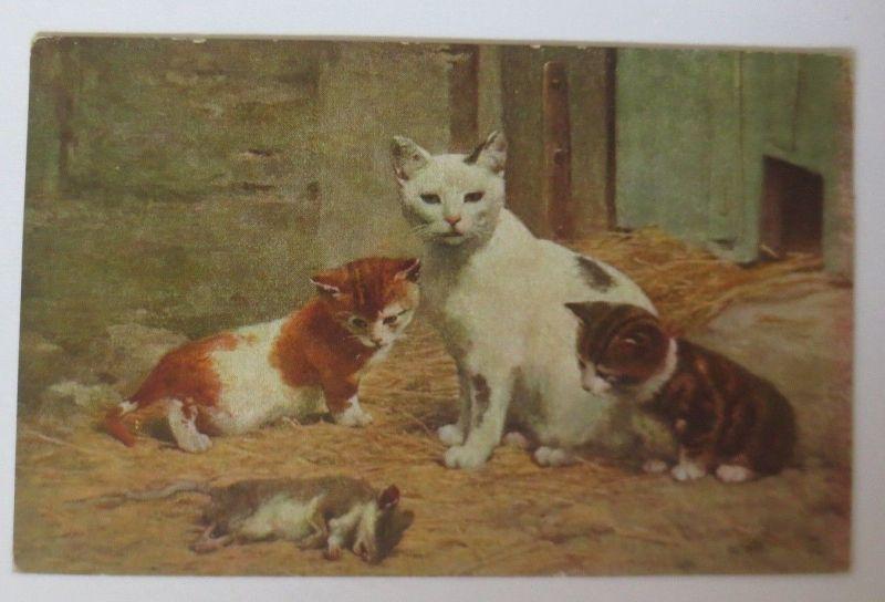 Katzen,  Maus,   1910  ♥ (41771)