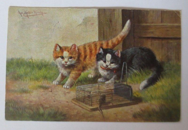 Katzen, Käfig, Maus, 1900, A. Müller   ♥ (66751)
