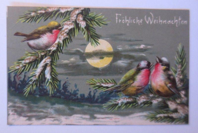 Weihnachten, Vogel, Tannenzweige, Vogel, Mond,  1908, Prägekarte ♥(67324)