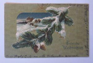 Weihnachten, Tannenzweig, Tannenzweig, Winterlandschaft,1909, Prägekarte♥(67171)