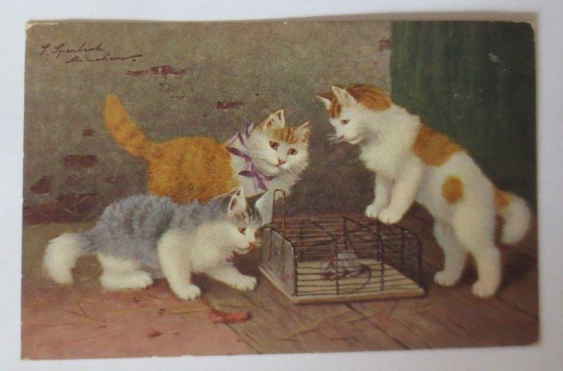 Katzen, Käfig, Maus,   1900, S. Sperlich  ♥ (16036)