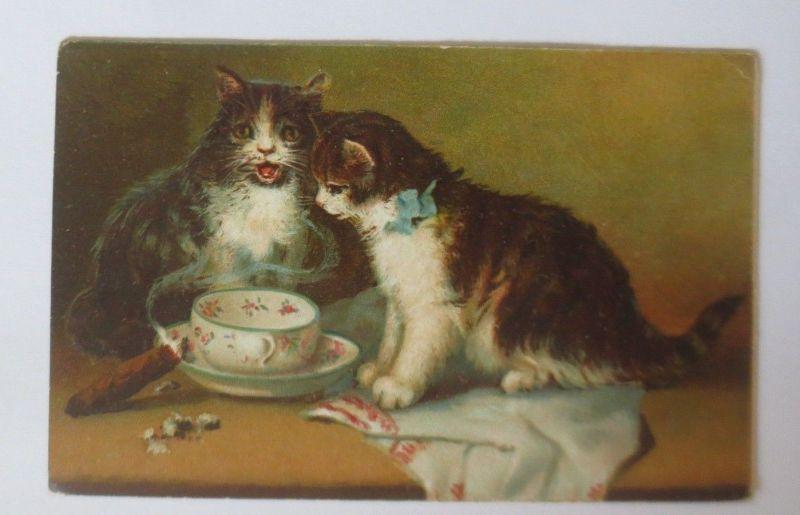 Katzen, Tasse, Zigarre,    1920 ♥ (64493)