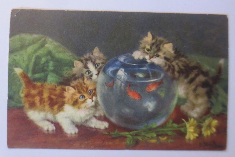 Katzen, Fische, Glas, Blumen,    1955, D. Merlin ♥ (65630)