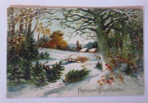 Weihnachten, Winterlandschaft, Schlitten, Tannenbaum, 1912, Prägekarte ♥ (67628)