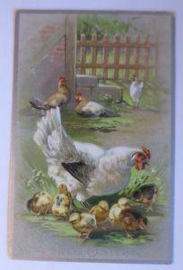 Ostern, Huhn, Küken,   1912, Prägekarte ♥   (64474)