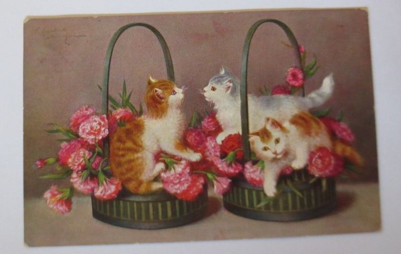 Katzen,  Korb, Nelken,   1911, S. Sperlich  ♥ (67517)