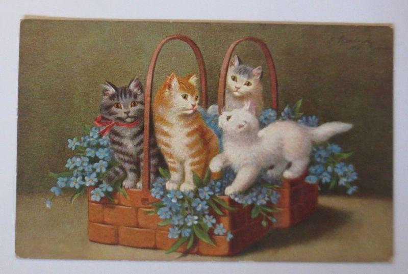 Katzen,  Korb,  Vergissmeinnicht,    1911, S. Sperlich  ♥ (67515)