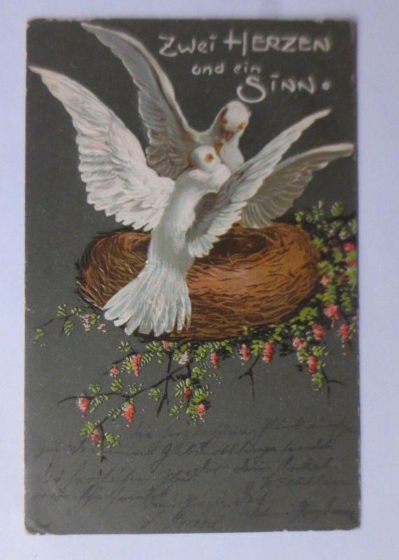 Tauben, Nest, Blumen, Zwei Herzen und ein Sinn,   1903, Prägekarte ♥ (63694)
