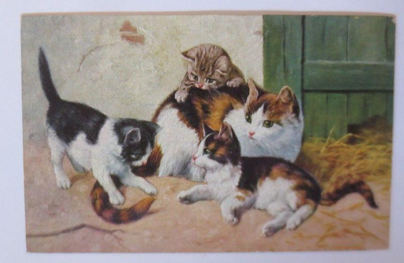 Katzen, Spielen,  1930  ♥ (67508)