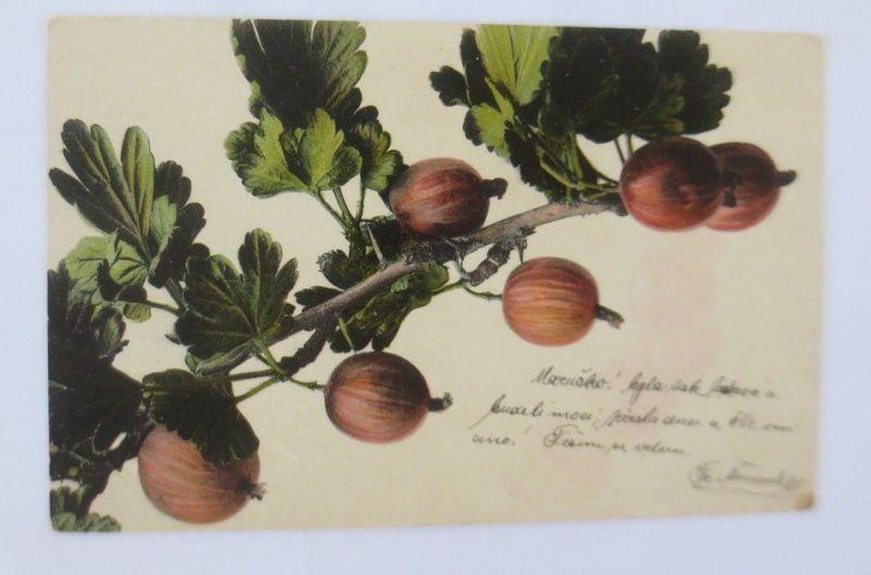 Obst, Früchte, Stachelbeere,  1900 ♥ (68794)