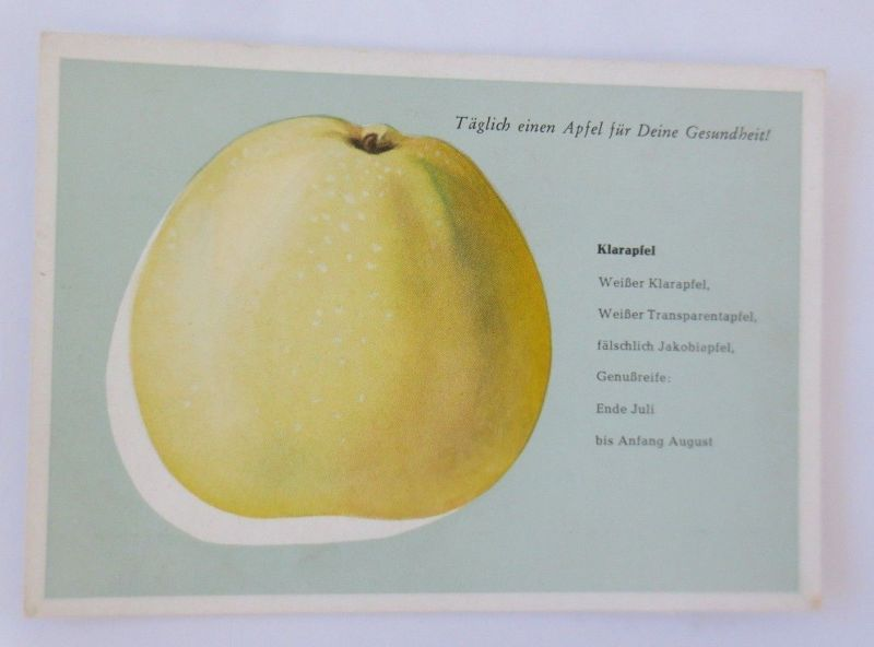 Obst, Früchte, Apfel, Klarapfel, Weißer Klarapfel 1945 ♥ (68793)