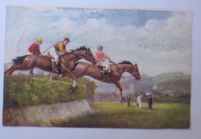 Pferde, Pferderennen, Jockey,  1906, Oilette ♥ (68571)