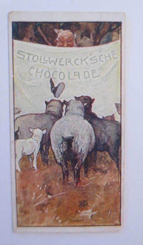 Stollwerck, Hoflieferant, Gruppe 147,  Nr.5, Album Nr.4,  1900 ♥ (5414)