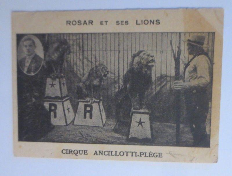 1700 Ex Ungue Leonem Löwe lion Löwen lions baroque etching ...