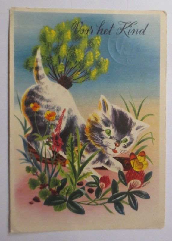Katzen, Blumen, Schmetterling,   1950  ♥ (66217)
