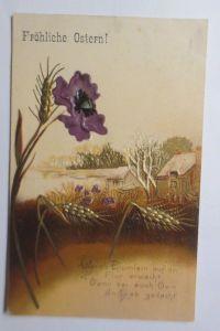 Ostern,  Landschaft, Blumen, Mohnblume,    1908, Prägekarte  ♥ (70310)