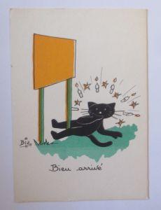 Karikatur, Biz, Katzen, Kerzen,     1960 ♥ (66195)