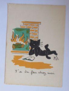 Karikatur, Biz, Katzen, Kamin, Lesen,     1960 ♥ (66193)