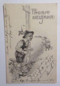 Neujahr, Kinder, Mode, Schwein, Kleeblatt,   1901, P. Hofer   ♥ (25820)