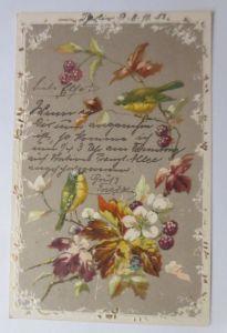 Vogel, Blumen,  1904, Prägekarte ♥ (10567)