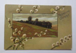 Ostern, Landschaft, Weidenkätzchen, Mailick,   1906, Prägekarte   ♥  (70315)