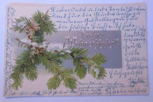 Weihnachten, Tannenzapfen,  1904, Prägekarte ♥ (67349)