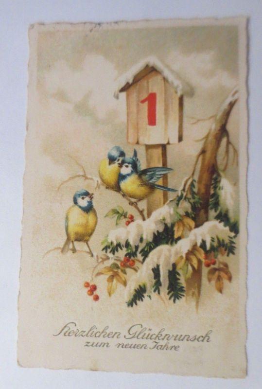 Neujahr,  Winterlandschaft, Meise, Kalender  1927  ♥ (23667)
