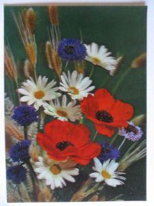 Blumen Pflanzen, 3 D Karte Country Flowers, Top Stereo ca.1990 (26112)