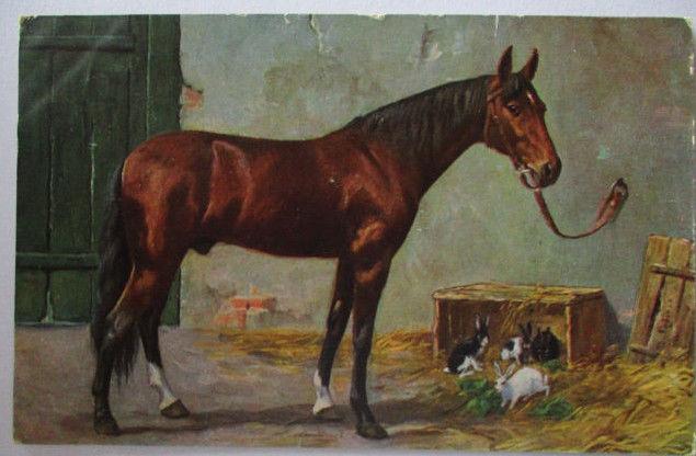 Pferd Hasen Kaninchen, 1925 (13679)