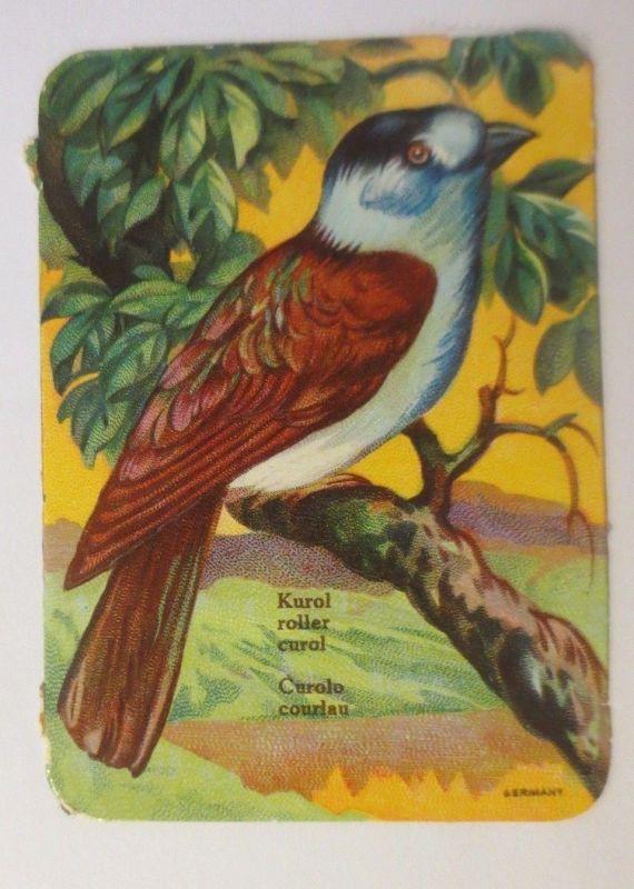 Geburtstag, Blumen, Rosen, Jugendstil,  1903, Prägekarte  ♥ (34641)