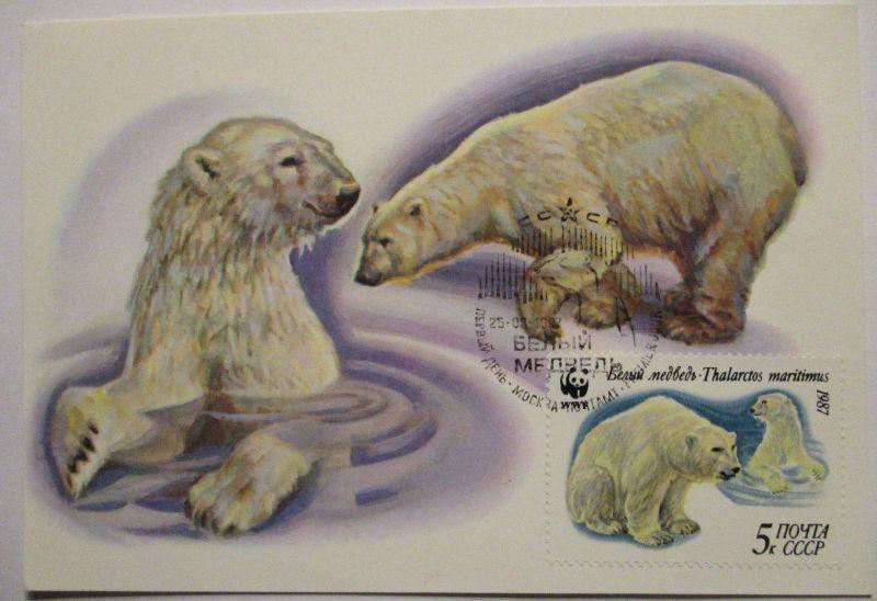 Eisbär Polarbär, Maximumkarte UDSSR 1987 (26793)